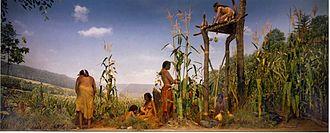 Masakan Amerika Sebelum Tahun 1600